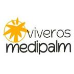 logo_medipalm